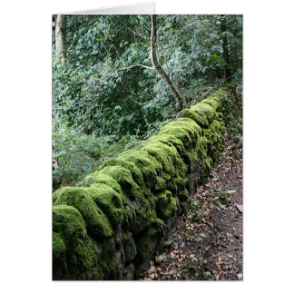 Dry stone wall covered in Moss Greeting Cards