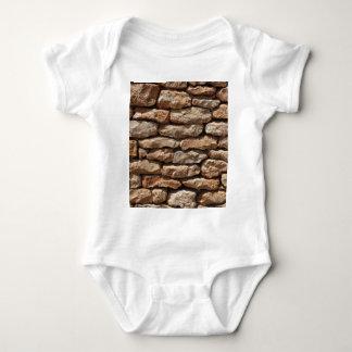 Dry Stone Wall Creeper