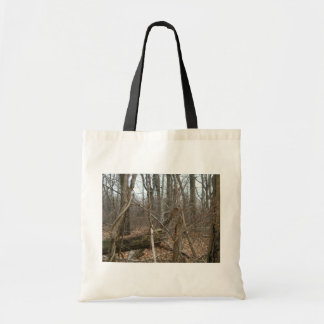 Dry Trees In Forrest With Fallen Leaves Budget Tote Bag