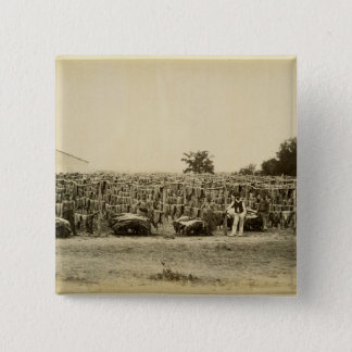 Drying leather, Argentina (albumen print on card) 15 Cm Square Badge