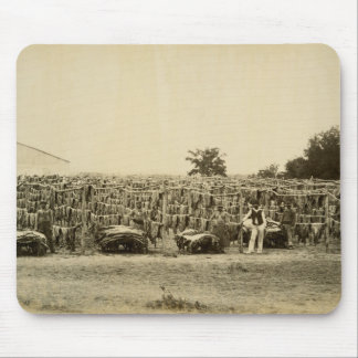 Drying leather, Argentina (albumen print on card) Mouse Mat