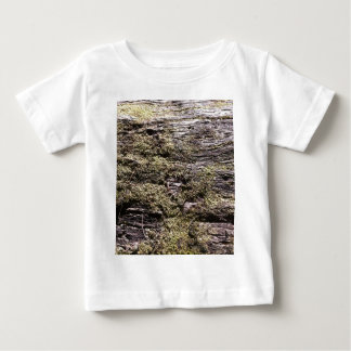 Drying moss on fallen tree decaying in wilderness baby T-Shirt