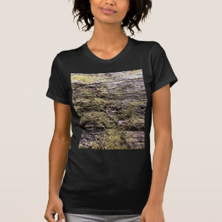 Drying moss on fallen tree decaying in wilderness t-shirt
