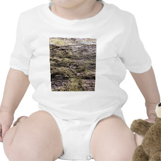 Drying moss on fallen tree decaying in wilderness baby bodysuits