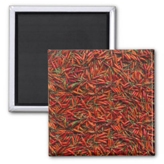 Drying Red Hot Chili Peppers Square Magnet