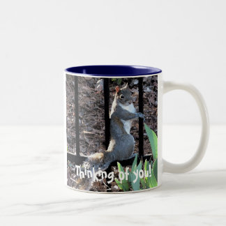 DS- Thinking of you! squirrel mug