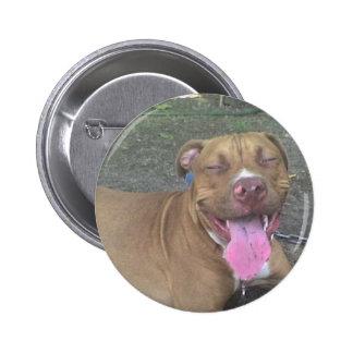 DSC00002  AMerican Pitbull Terrier 6 Cm Round Badge