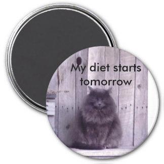 DSC00448, My diet starts tomorrow Magnet