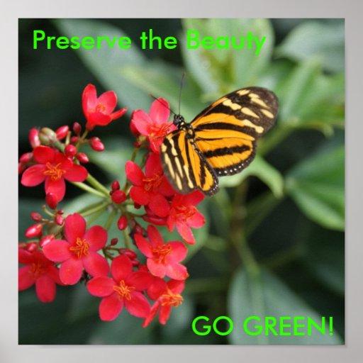 DSC00452, Preserve the Beauty, GO GREEN! Poster