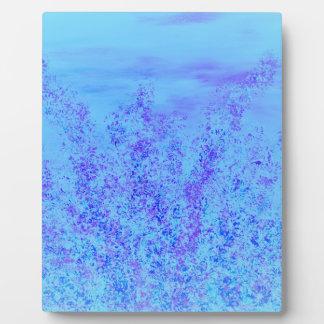 DSC_0437 (4).JPG Blue springs promise Plaque