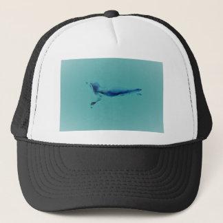 DSC_0563 (2).JPG Penguin design by Jane Howarth Trucker Hat