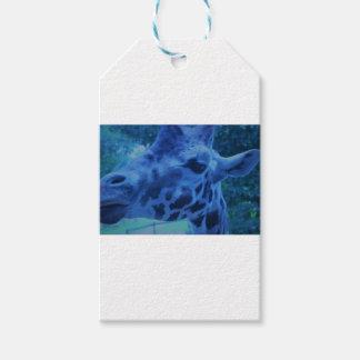 DSC_0729 (3).JPG Blue Giraffe by Jane Howarth Gift Tags