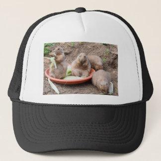 DSC_0876 (2).JPG by Jane Howarth Trucker Hat