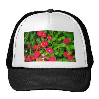 DSC_2418 TRUCKER HAT