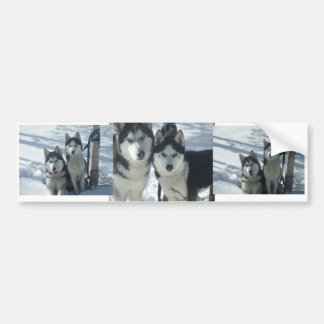 DSCF3005, DSCF2987, DSCF2990 - Customized Bumper Sticker
