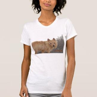DSCN0567 T-Shirt