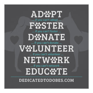 DTDR Adopt Foster Poster Gray
