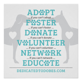 DTDR Adopt Foster Poster White