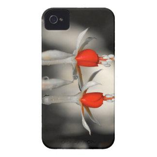 Dual Fuchsia iPhone 4 Case-Mate Cases