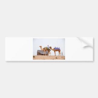 Dubai desert bumper sticker