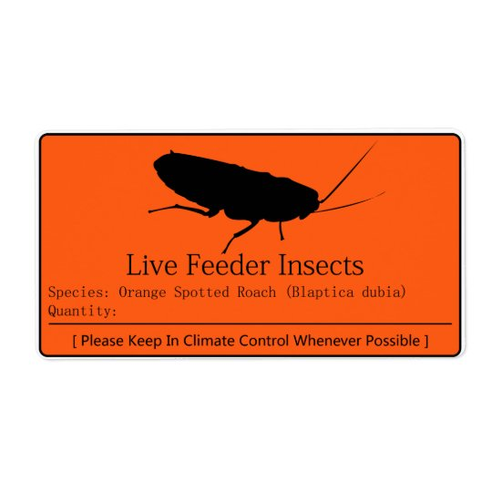 Dubia Roach Label Shipping Label