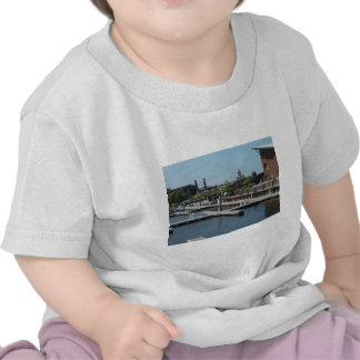 Dubuque ice harbour tee shirts