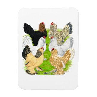 D'Uccles Six Hens Flexible Magnets