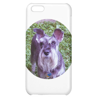 Duchess iPhone 5C Case