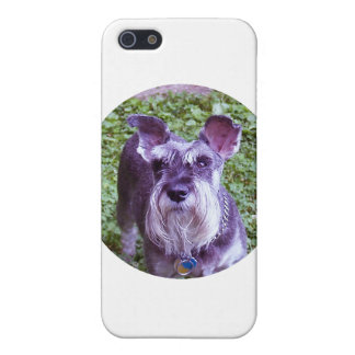 Duchess Covers For iPhone 5