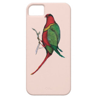 duchess lorikeet, tony fernandes barely there iPhone 5 case