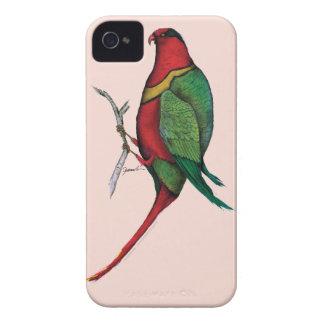 duchess lorikeet, tony fernandes Case-Mate iPhone 4 case
