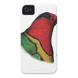 duchess lorikeet, tony fernandes iPhone 4 case