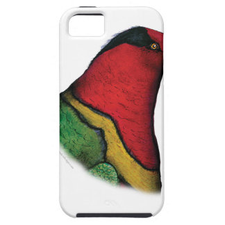 duchess lorikeet, tony fernandes iPhone 5 case