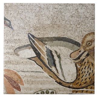 Duck and bird, Nile mosaic, House of the Faun Tile