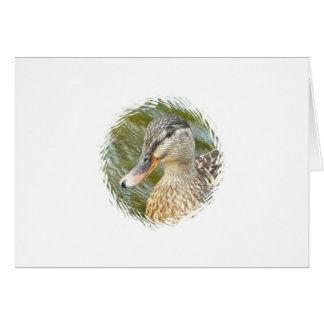 Duck Art Card