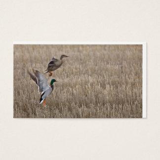 Duck Business Card