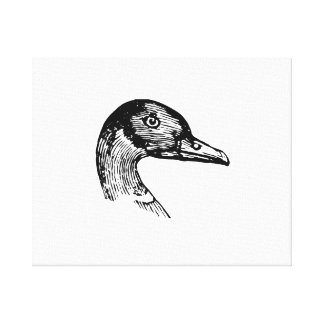Duck Gallery Wrapped Canvas