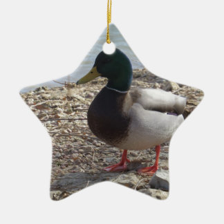 Duck Christmas Ornament