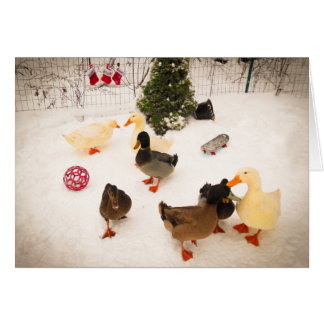 Duck Christmas Party Christmas Card