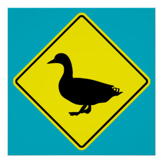 Duck Crossing Road Poster