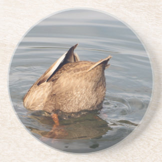 Duck Ducking Coaster