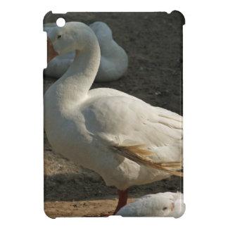 Duck enjoying the winter sun in Delhi Zoo Case For The iPad Mini