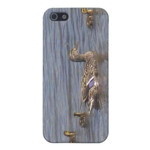 Duck Family iPod G4 Cover iPhone 5 Case