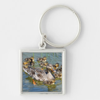Duck Family Keychain