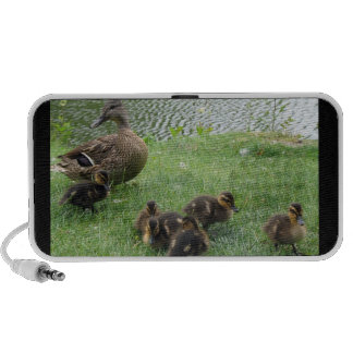 DUCK FAMILY TRAVEL SPEAKER