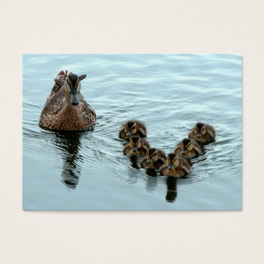 Duck formation business card