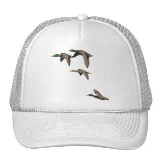 Duck Hunting Mallards in Flight Cap