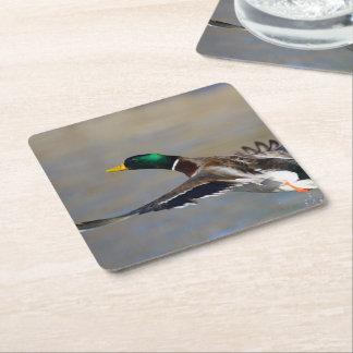 duck in flight square paper coaster