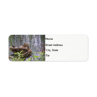 Duck in the reeds return address label