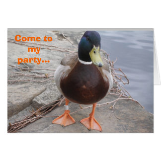DUCK INVITATION CARD